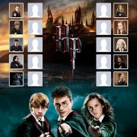 Harry Potter Match & Match